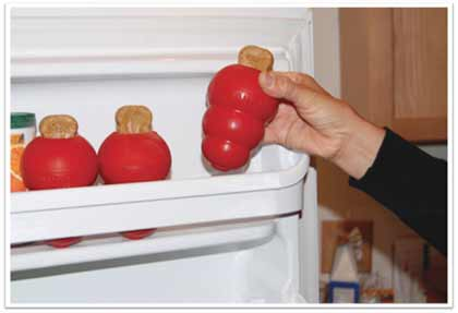 Easy Kong Toy for Dog